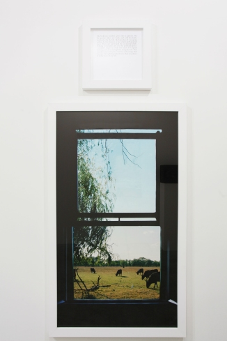 """Sophie Calle """"The view of my life / The Autobiographies"""", 2010 Color photograph, aluminum, text, frame 170 x 120 cm + 50 x 50 cm, 3 / 5 E courtesy: the artist and A3, Berlin Photographer: Olivia Kwok"""
